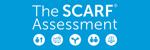 scarf-assessment-blast-header-2